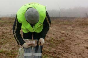 Проведение геологических изысканий для анализа грунтов
